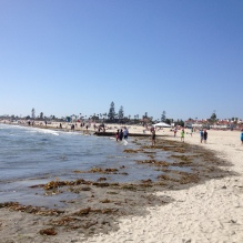 there was a lot of seaweed in some parts of the beach